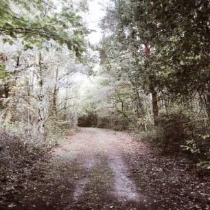 Promenade du mercredi