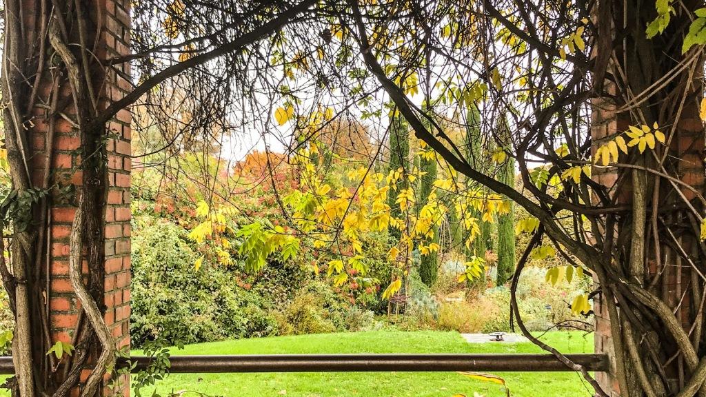 Merveilleux jardin des plantes