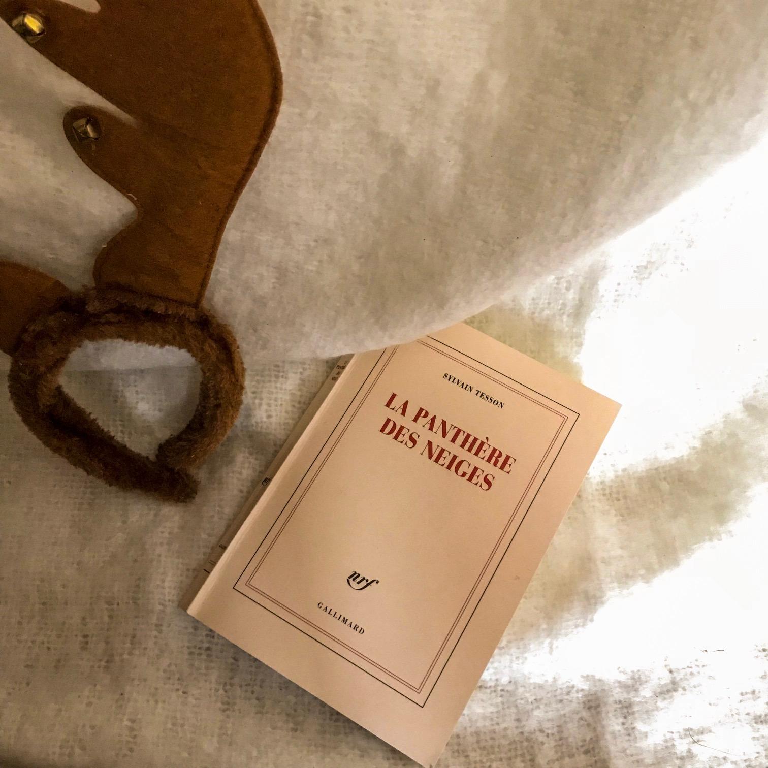 La Panthère des neiges, de Sylvain Tesson : consentir au monde
