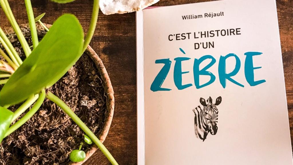 C'est l'histoire d'un zèbre, de William Réjault : le pouvoir des rayures