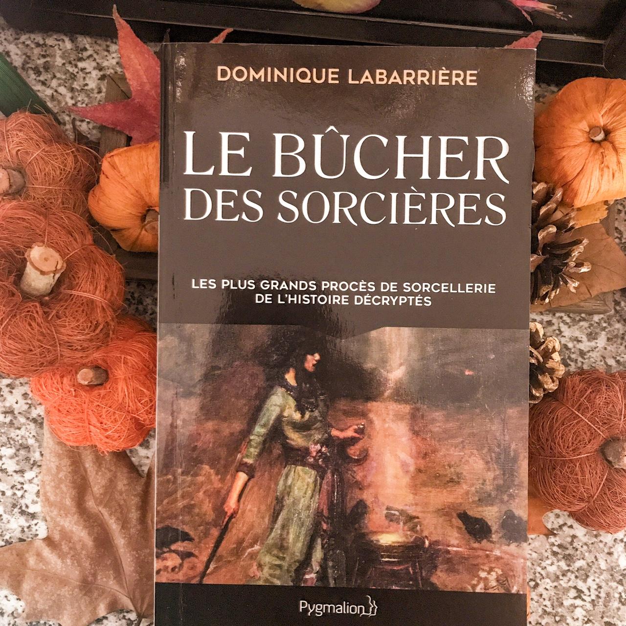 Le bûcher des sorcières, de Dominique Labarrière : les plus grands procès de sorcellerie de l'histoire décryptés