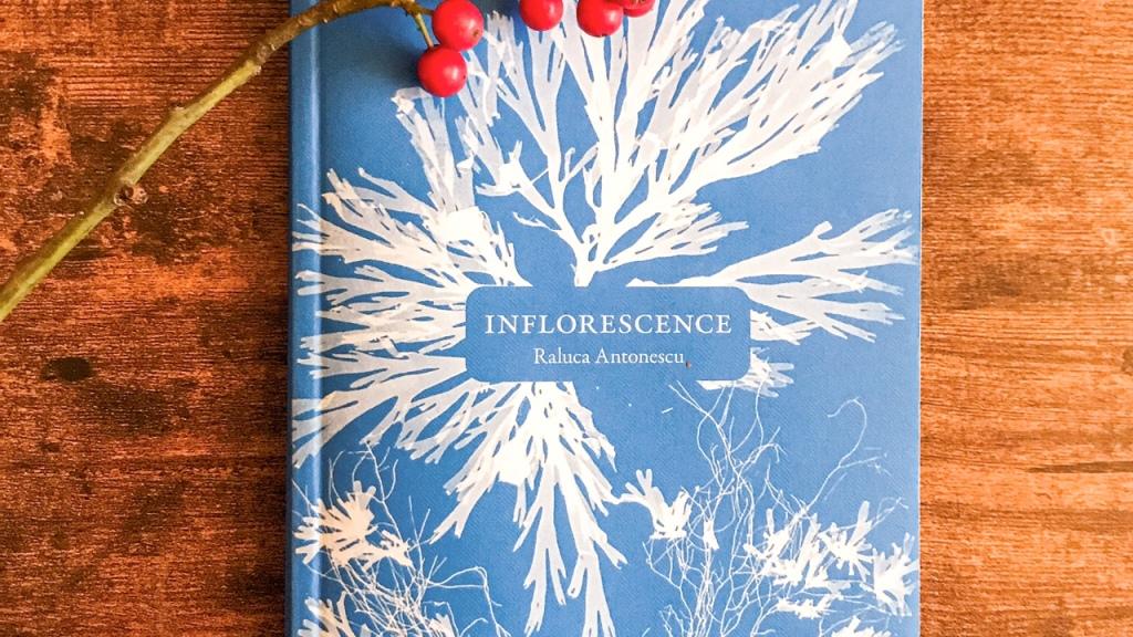 Inflorescence, de Raluca Antonescu : histoires de femmes