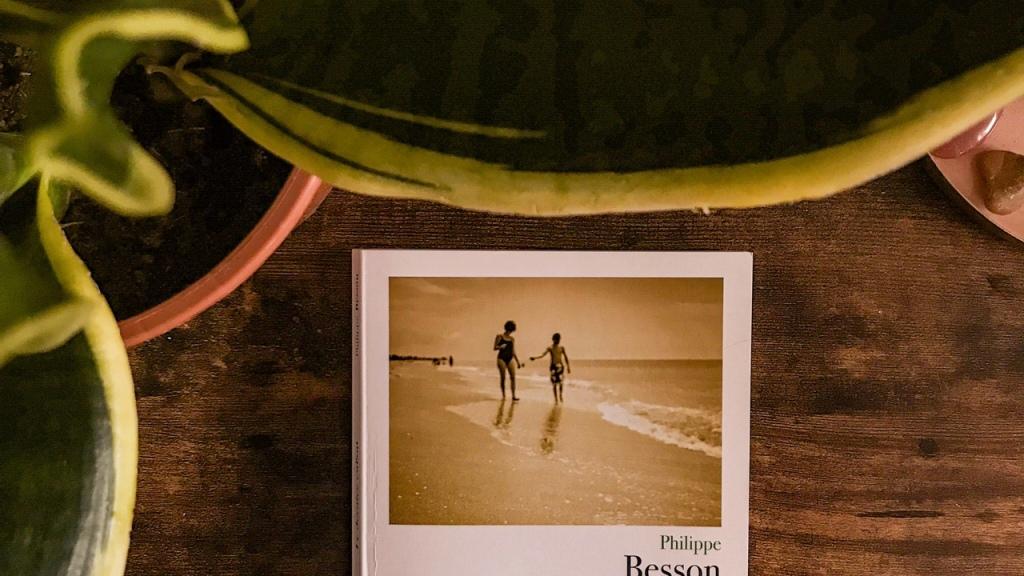 Le dernier enfant, de Philippe Besson : le syndrome du nid vide