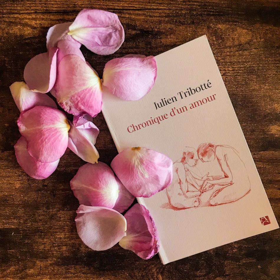 Chronique d'un amour, de Julien Tribotté : aimer au jour le jour