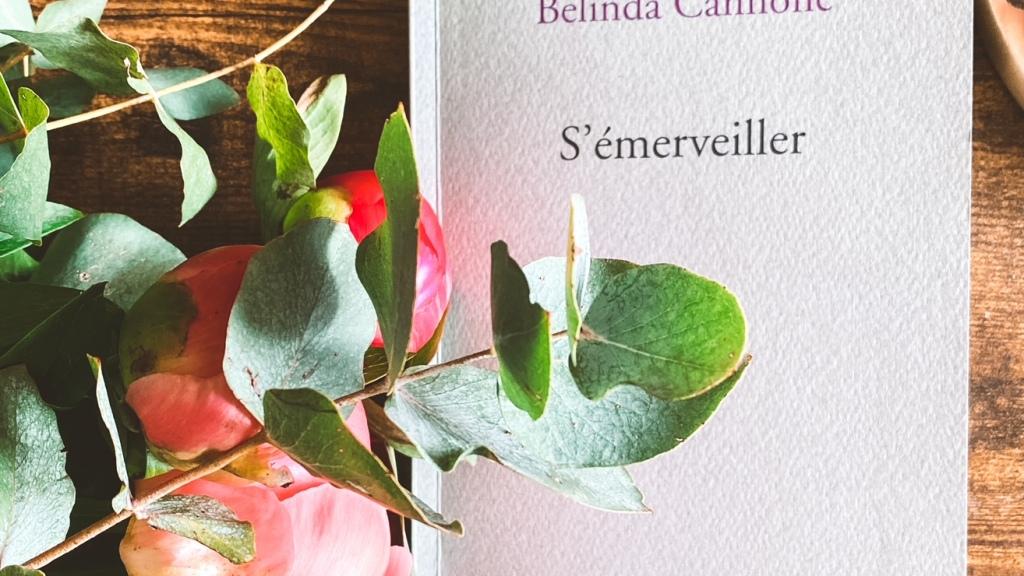 S'émerveiller, de Belinda Cannone : la vigilance poétique