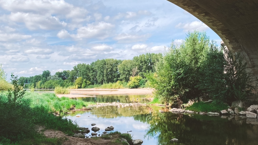 Instantané : bords de Loire